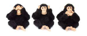 692740_three-monkeys